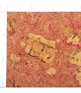 Parquet liège turq sol à coller vernis satin - 6 dalles de 60 x 30 cm soit 1,08 m² - 304 turq c